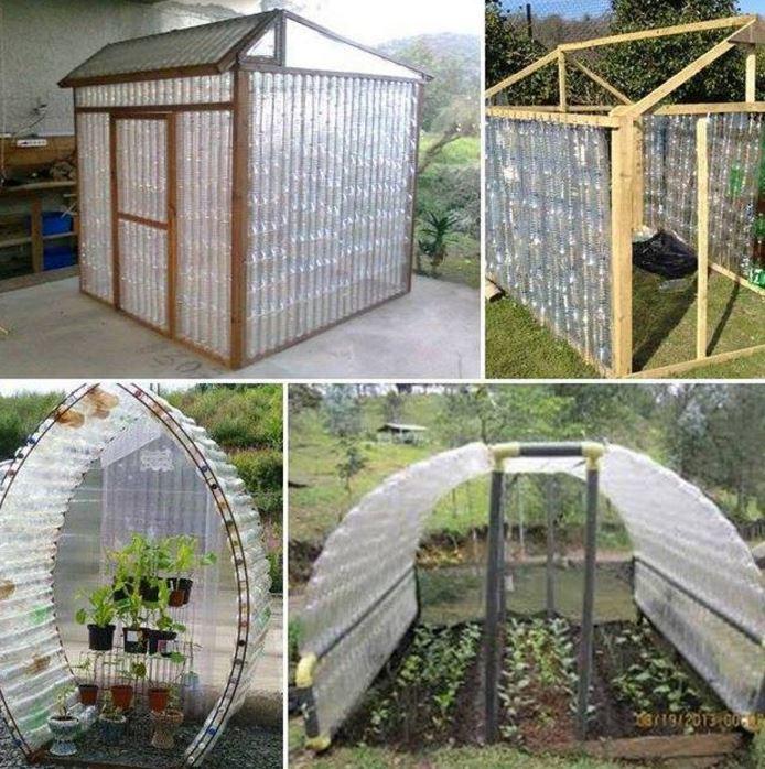 shelter for the plants plastic bottles