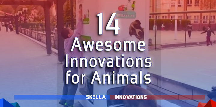 Amazing Technology and Innovation for Animals